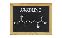 Факти та міфи про L-аргінін